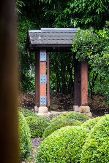 Sheltering from the rain on the teahouse verandah, looking towards the 'secret' gate, Nerima Gardens Stage 2
