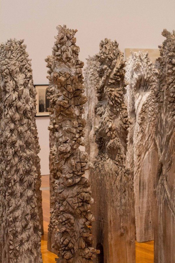"""""""Woods III"""" by Shigeo Toya.  Part of the """"Lightness & Gravity"""" exhibit at GoMA."""