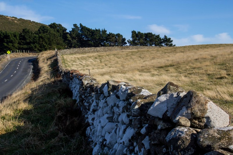 """Stone fence, Highcliff Rd, Otago Peninsula (directly opposite the """"Lost Horizon"""" photo above."""