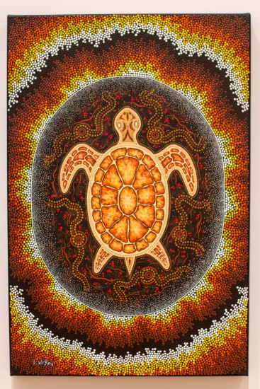 """Turtle Dreaming"" - Dale Weston"
