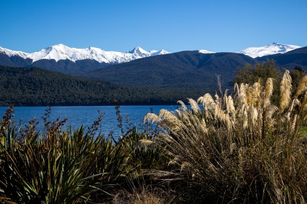 view of Lake Te Anau - from Te Anau Wildlife Park