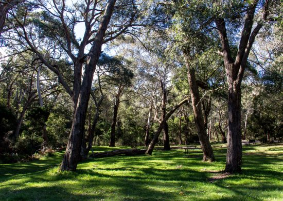 Barringo Reserve Picnic Area, Macedon Ranges